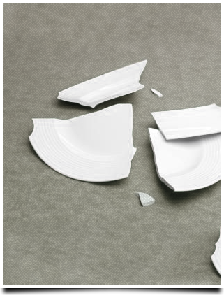 picture of a smashed plate